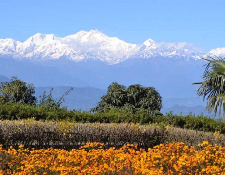 darjeeling-sikkim